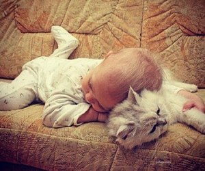 baby, cat, and sleep image