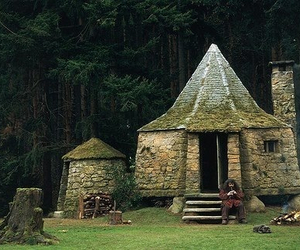 harry potter, hagrid, and house image