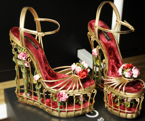shoes and dolce&gabbana image