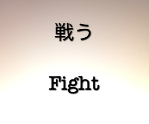 fight, japan, and japanese image