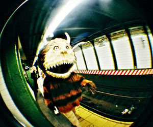 photography, where the wild things are, and fisheye image