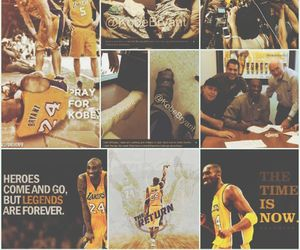 24, king, and lakers image