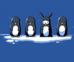 penguin, cute, and bunny image