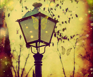 butterfly and lamp image
