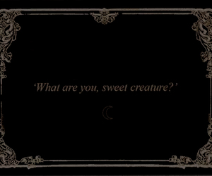 black, creature, and quotes image