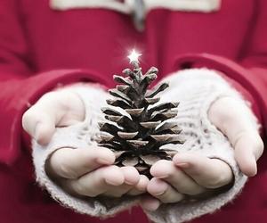 christmas, star, and winter image