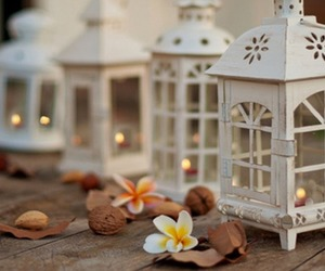 adorable, christmas, and decoration image