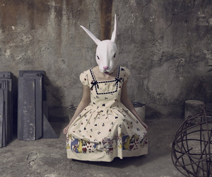 alice, dolly, and rabbit image