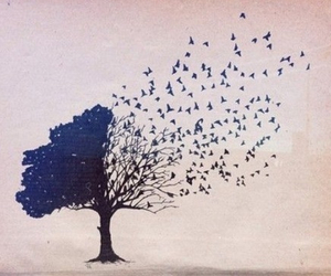 tree, bird, and art image