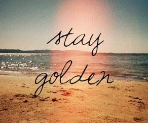stay and golden image