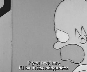 homer, simpsons, and quotes image