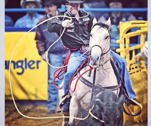 rodeo and nfr image