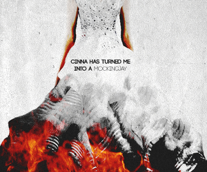 mockingjay, cinna, and katniss everdeen image