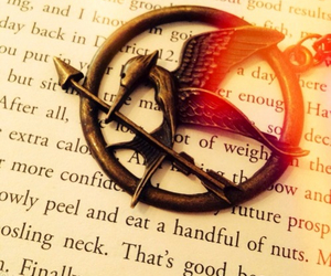 hunger games, catching fire, and books image