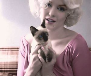 cat and Marilyn Monroe image