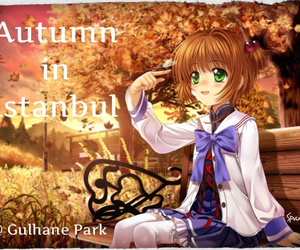 anime, autumn, and park image