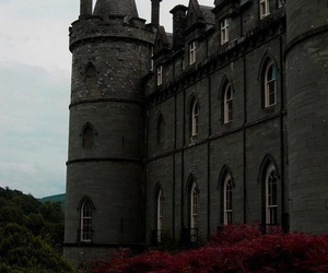 castle, beautiful, and nature image