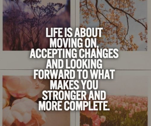 life and quote image