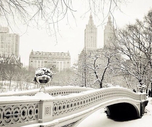 beautiful, bridge, and cold image