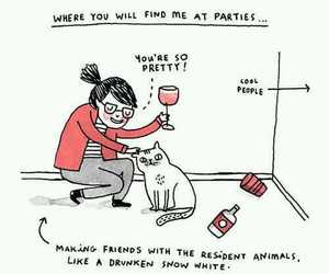 cat, party, and funny image