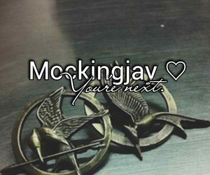 hunger games, catching fire, and love image