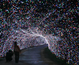 light, tunnel, and christmas image