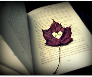 love, book, and leaves image