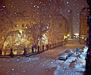 beautiful, cold, and snow image