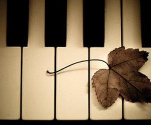 piano, leaf, and music image