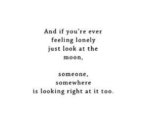 quotes, so true, and tumblr image