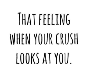 crush, love, and feeling image