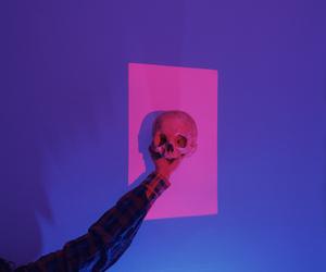 skull and light image