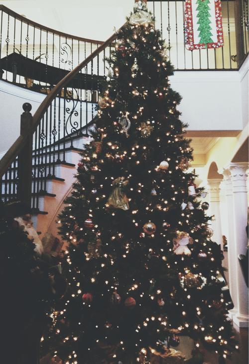 Christmas Tree Tumblr.Christmas Tree Via Tumblr On We Heart It