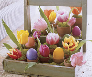 easter and tulip image
