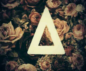 bastille, band, and flowers image