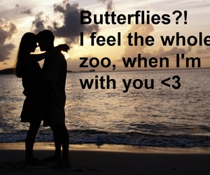 butterflies, crazy in love, and love image