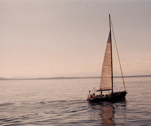 bliss, sailing, and yacht image