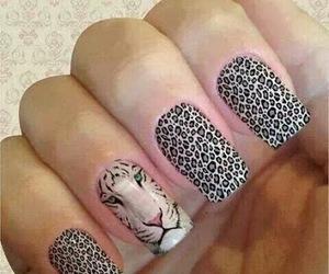 nails, leopard, and nail art image
