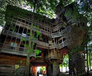 tennessee, tree house, and horace burgess image