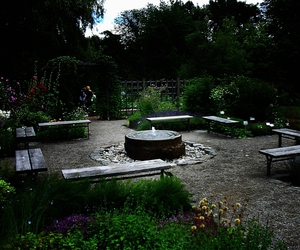 garden and summer image