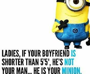 minions, boyfriend, and funny image