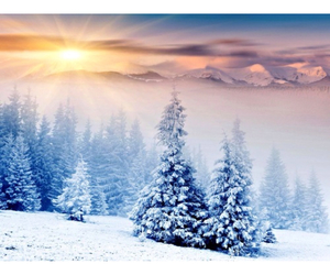 snowing, winter, and winteriscoming image