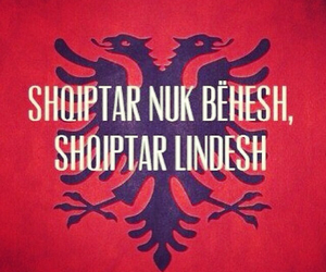 albanian, proud, and red and black image
