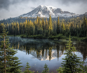 nature, forest, and mountain image