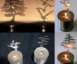 candle, light, and shadow image
