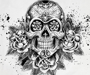 skull, rose, and black image
