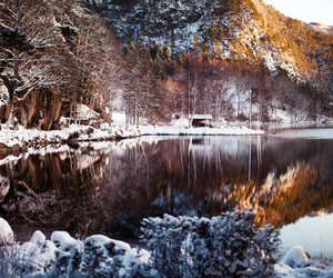 nature, water, and winter image