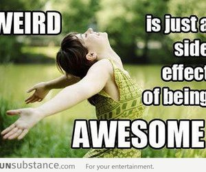 funny, awesome, and quote image