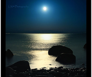 gorgeous, moon, and moonlight image