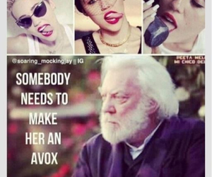 funny, miley cyrus, and hunger games image